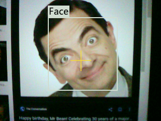 SingleFaceDetection.png