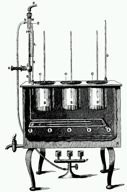 Dallinger's incubator