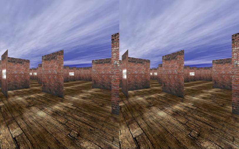 stereoscopic view