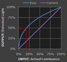 detected light