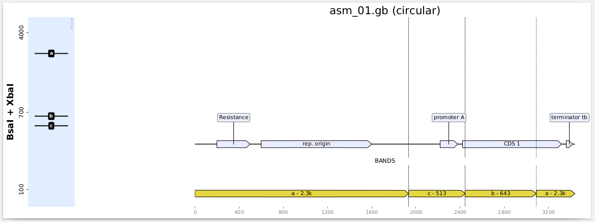 https://raw.githubusercontent.com/Edinburgh-Genome-Foundry/BandWagon/master/examples/plot_records_digestions_example.png