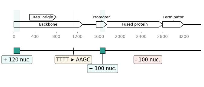 DNA Chisel algorithm