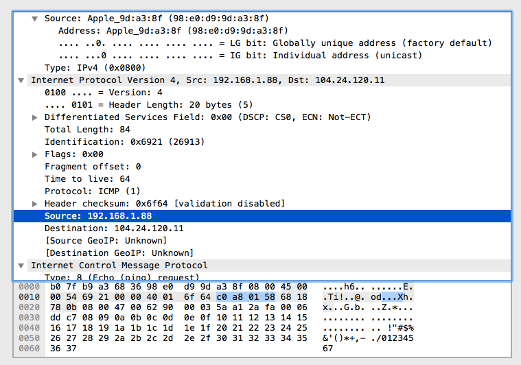ping_wireshark
