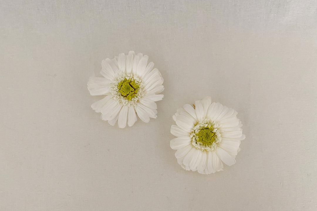 boucles doreille lily