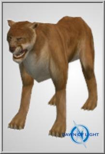 Tan Lion