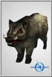 Zombie Boar