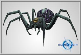Vein Spider