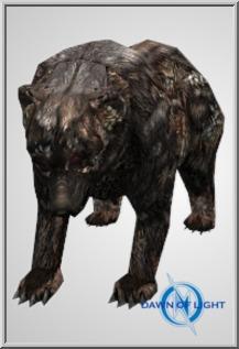 Diseaesd Bear