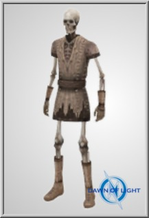 Player Skeleton w/Res