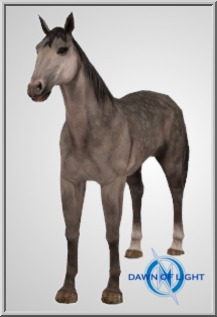 Speckled Horse
