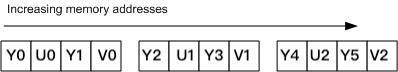 YUYV Format