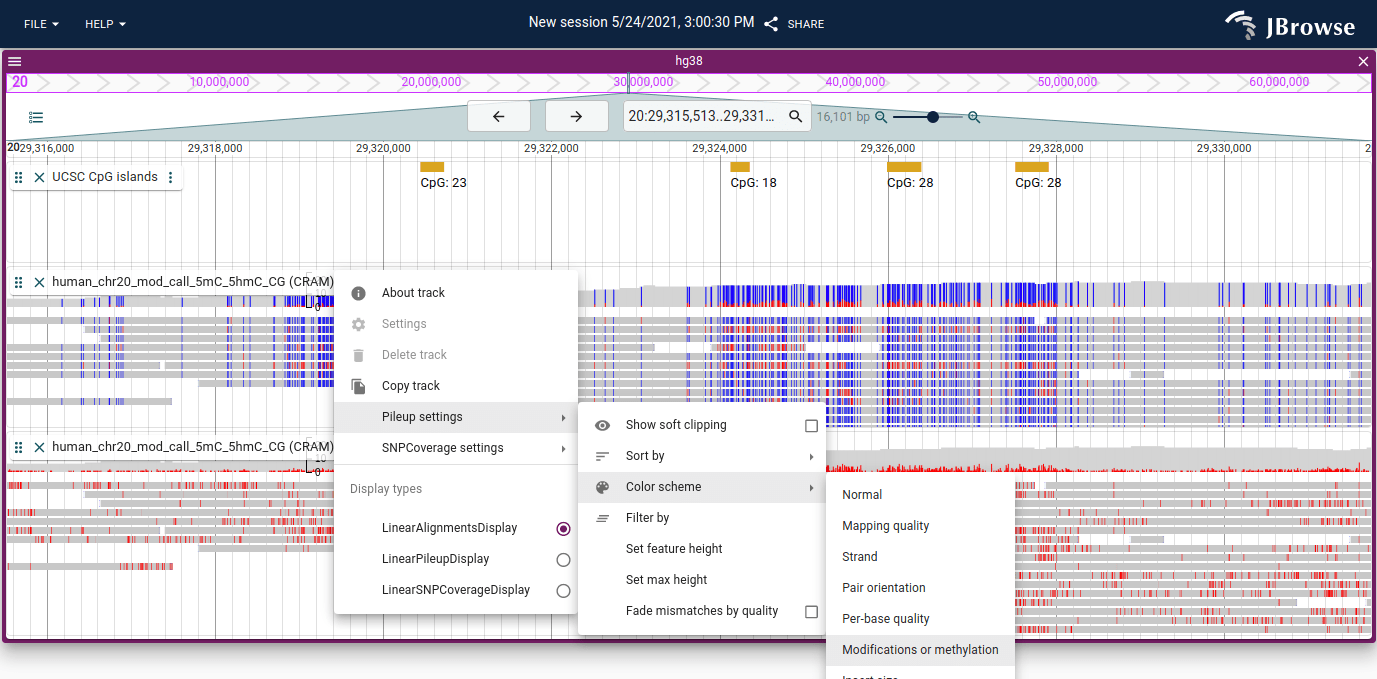 Screenshot of alignments tracks colored by methylation and base modification