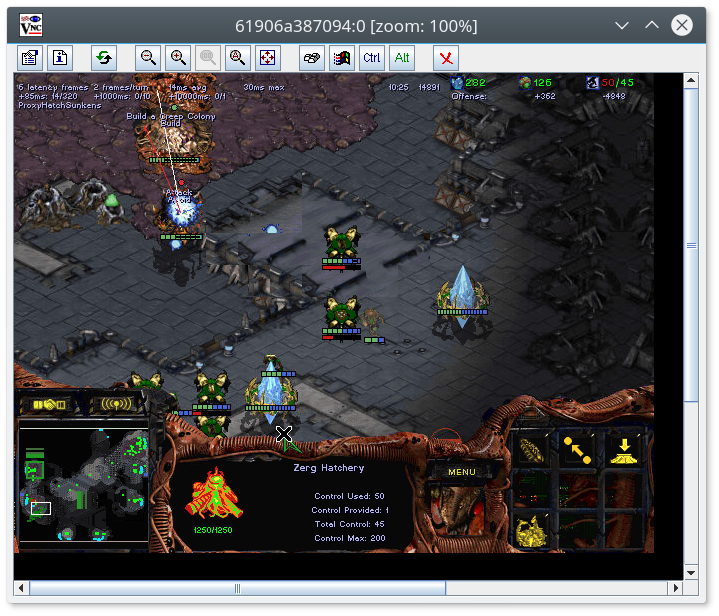 Starcraft playing on Linux