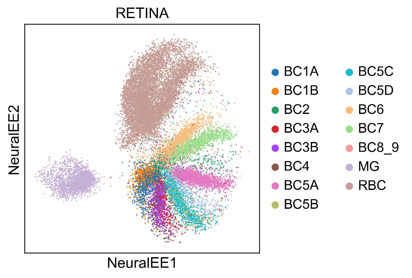 NeuralEE of HEMATO