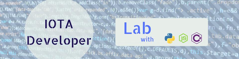 IOTA Developer Lab Banner