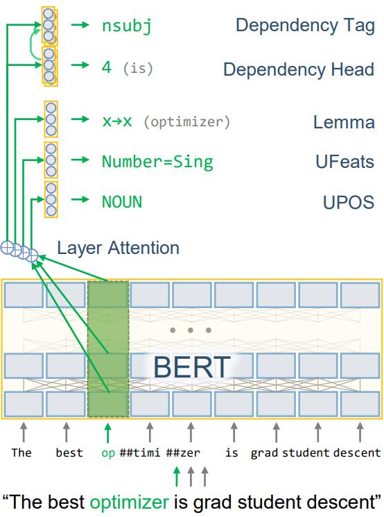 UDify Model Architecture