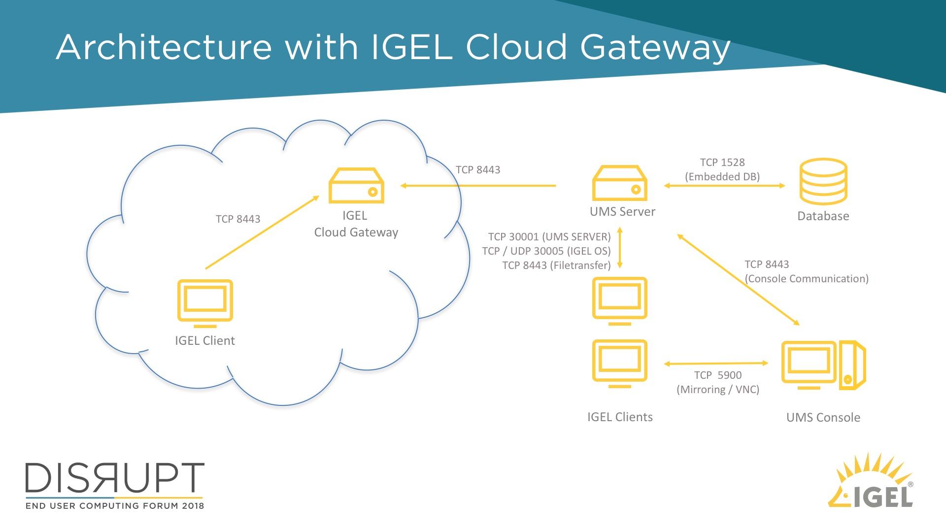 IGEL Cloud Gateway