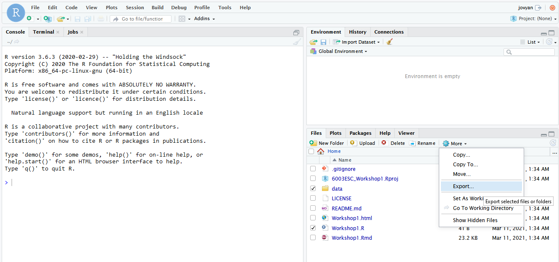Figure  2: Download files from Binder/RStudio screenshot.