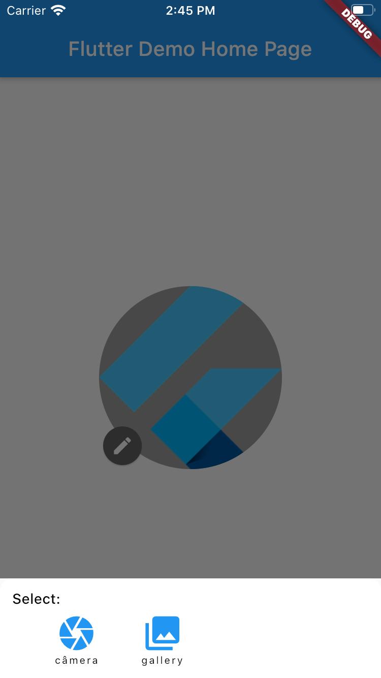 Modal image type picker
