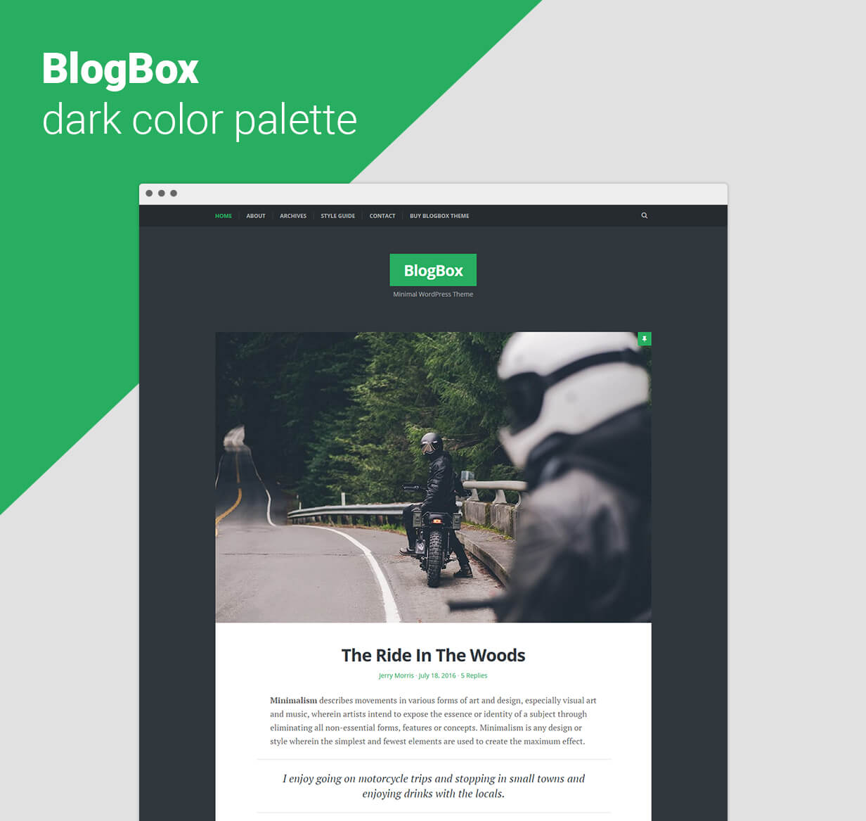 BlogBox - Responsive WordPress Theme Dark