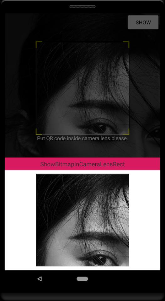 CameraLensView:crop-bitmap