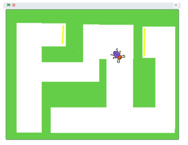 Bugrace som en labyrint