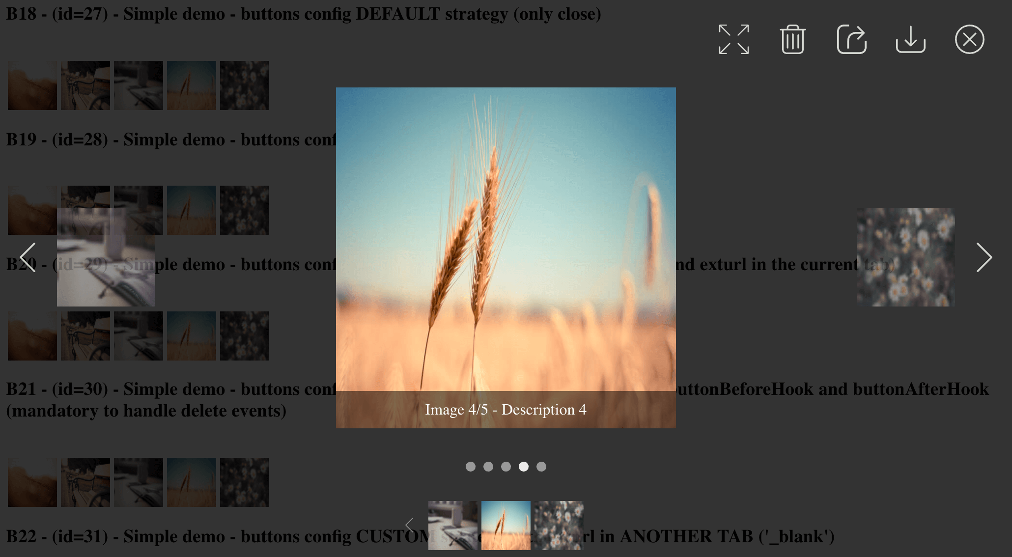 GitHub - Ks89/angular-modal-gallery: Modal image gallery for