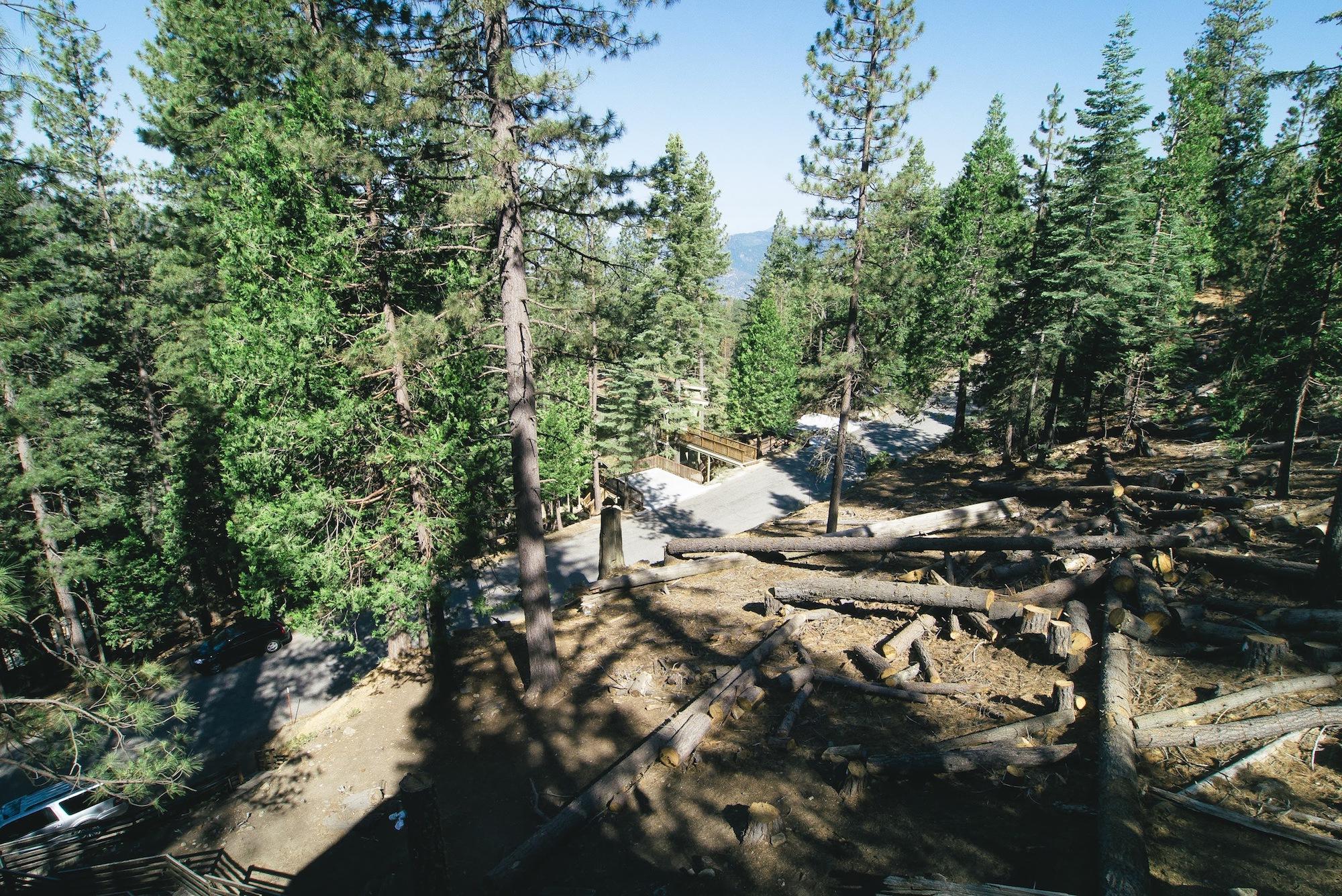 Yosemite's Scenic Wonders