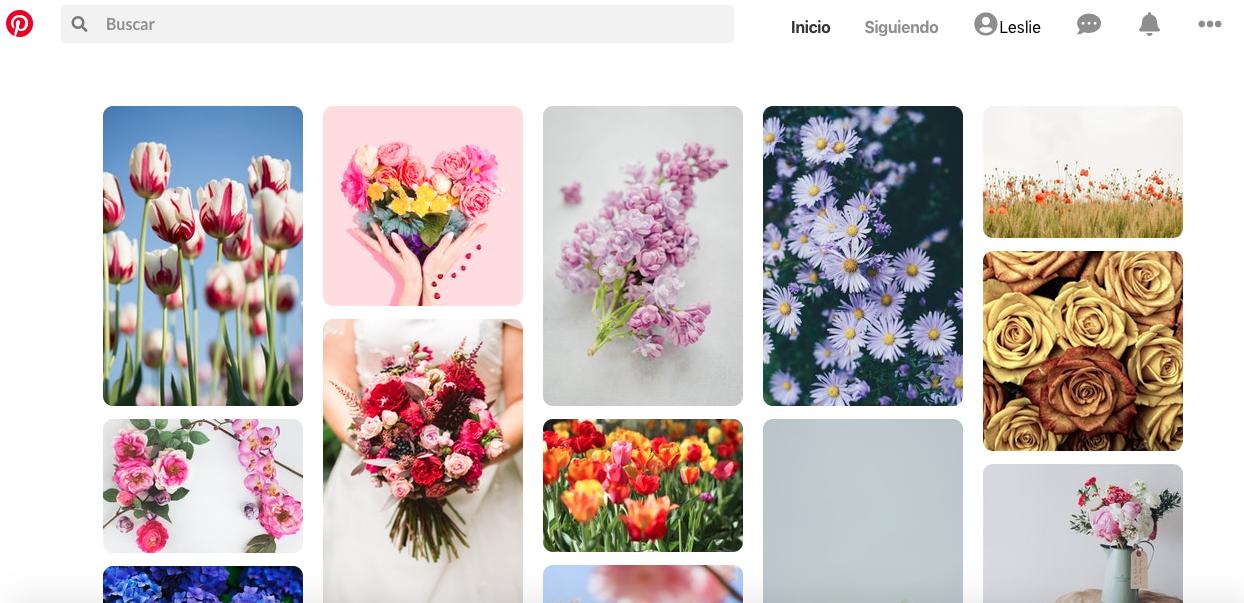 Desafío Pinterest