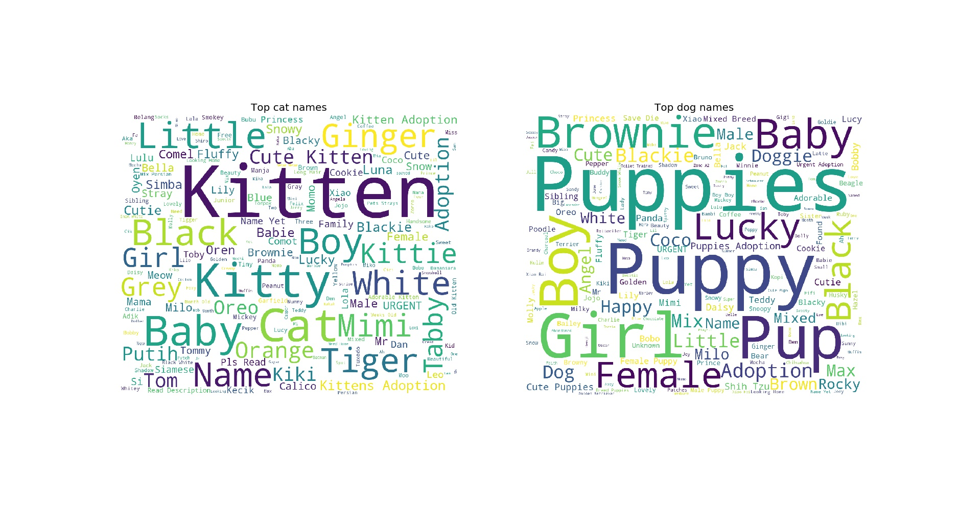 Word Count for Cats & Dogs