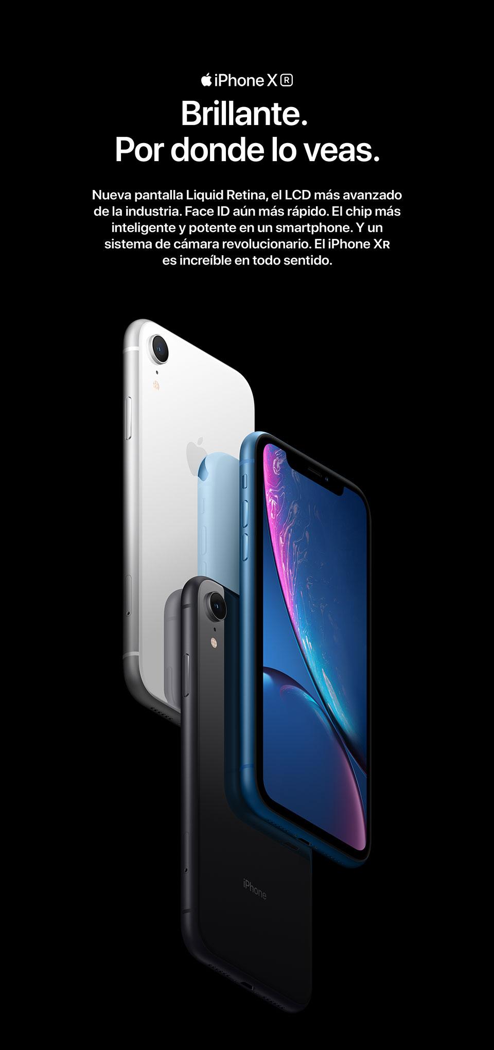 iPhone Xr. Brillante por donde lo veas.