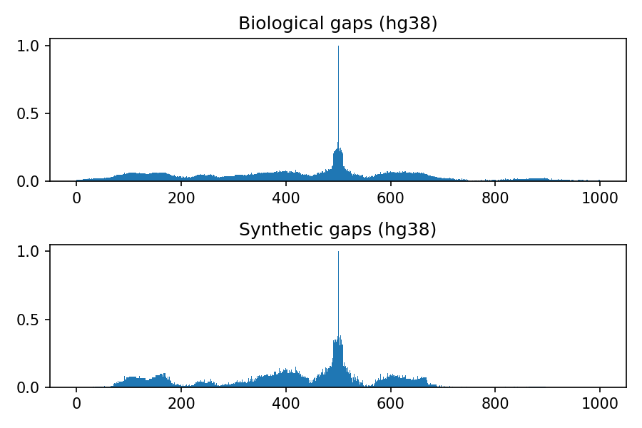 https://github.com/LucaCappelletti94/keras_synthetic_genome_sequence/blob/master/distributions/hg38.png?raw=true