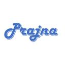 Icon for package Prajna