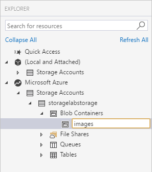 Lab Exercise - Azure for Research Online