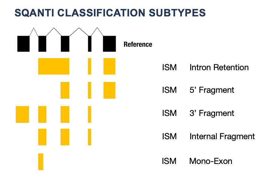 ISM_subtype