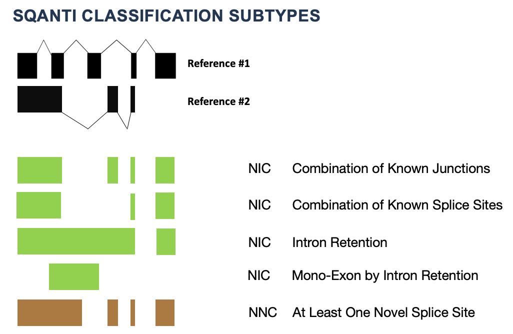 NIC_subtype