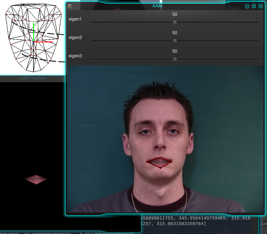 Ch7) 3D Head Pose Estimation using AAM and POSIT