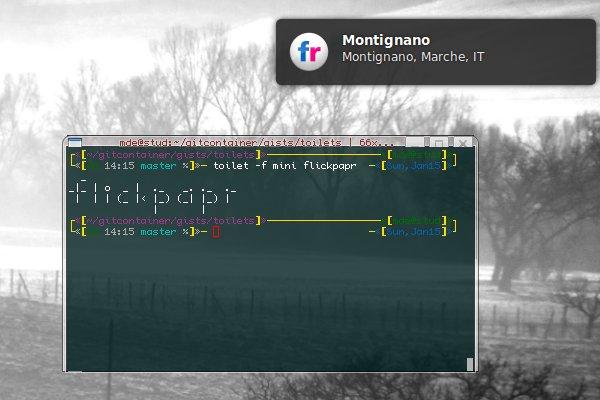 Flickpapr Screenshot