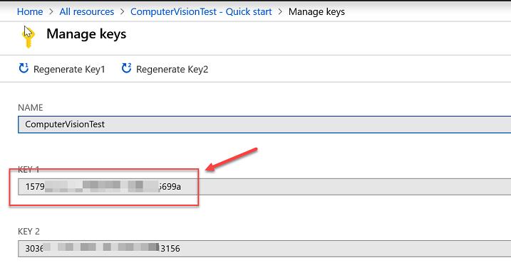 Computer Vision API keys