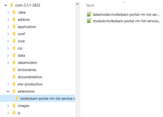 Extensions folder