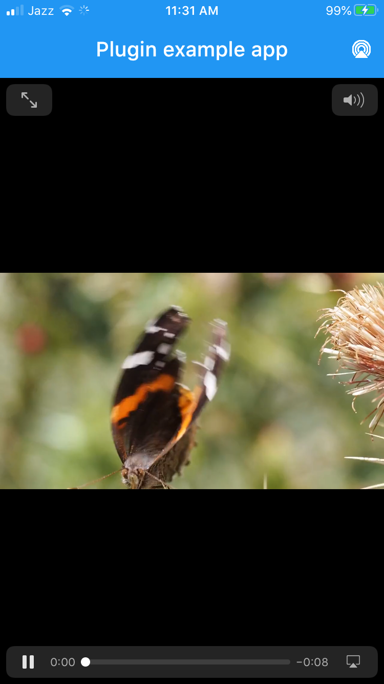 iPhoneVideo_Butterfly