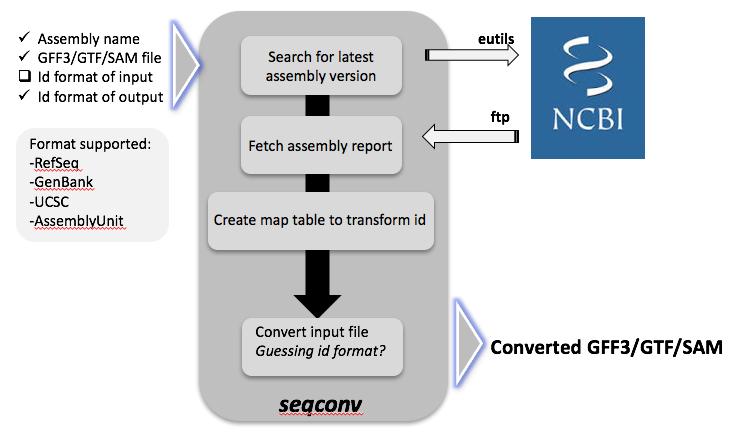 Squidstream Workflow: