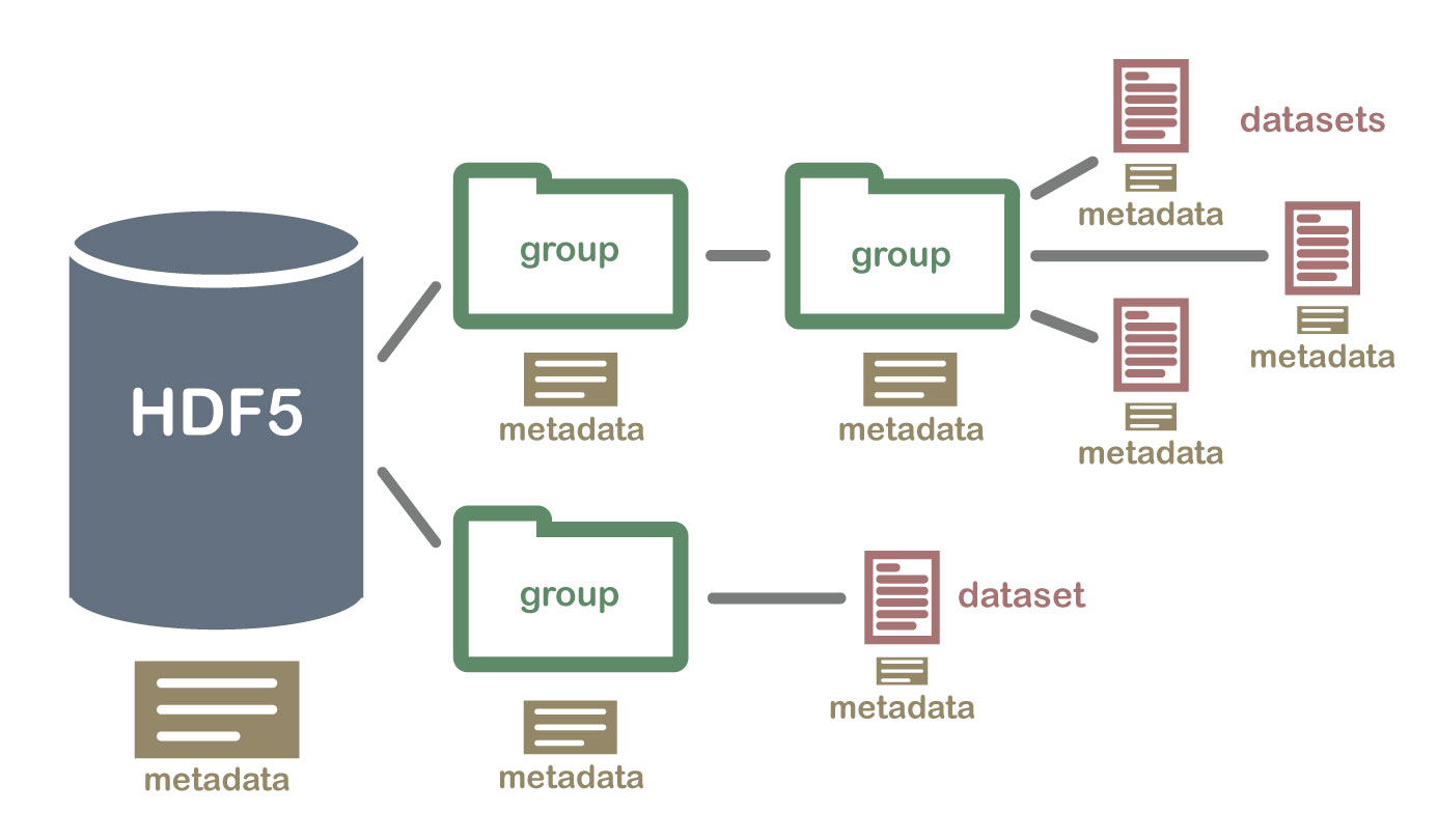 An illustration of a HDF5 file structure which contains groups, datasets and associated metadata