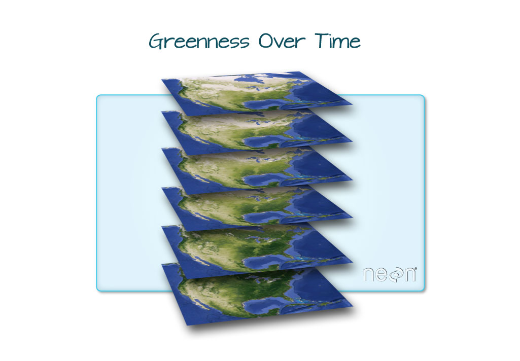 Graphic depicting a time series of the greenness over time of the United States