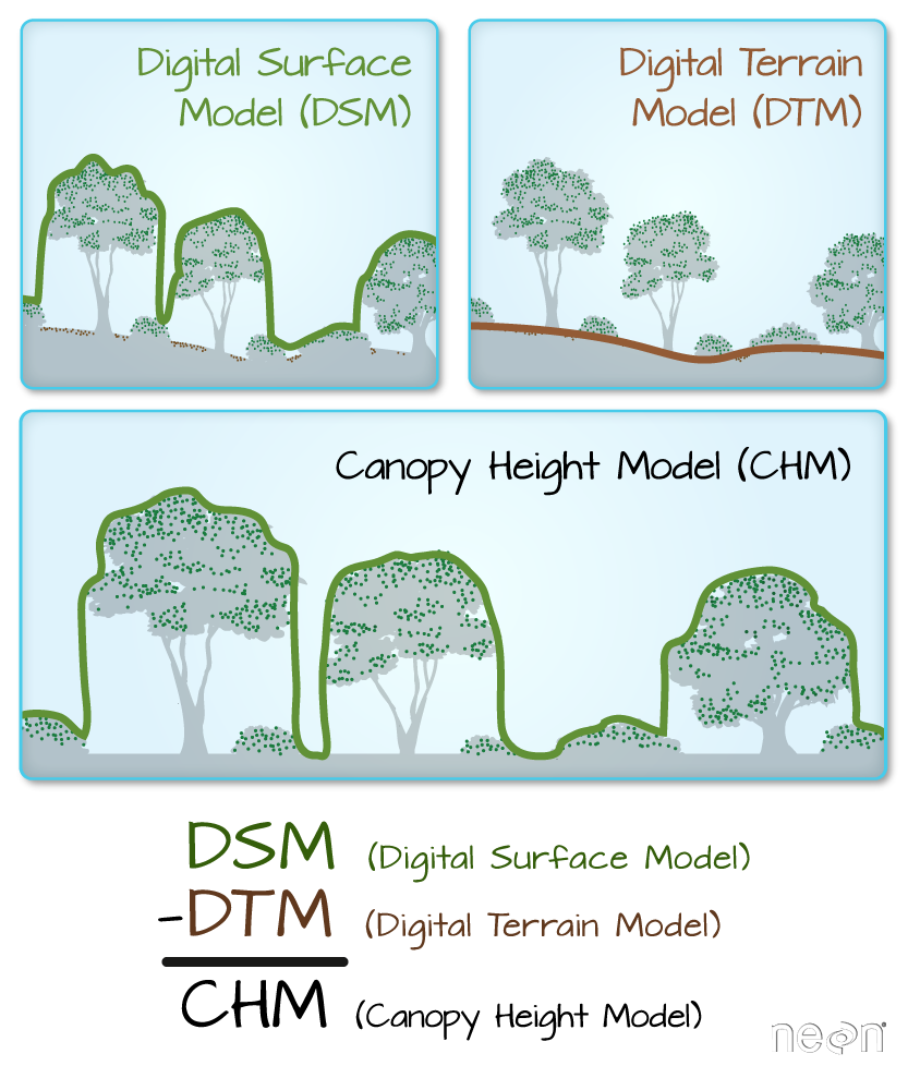 Image of the three most common LiDAR-derived products: Digital Surface Models (DSM), Digital Terain Models (DTM), and Canopy Height Models (CHM). The Digital Terrain Model allows scientist to study changes in terrair (topography) over time.