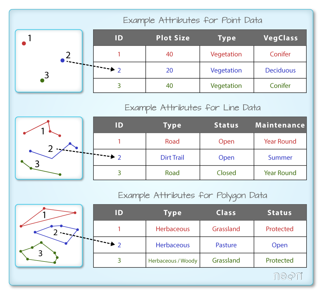 Example attribute tables for each different type of vector object.