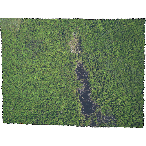 Composite RGB image of NEON's site Harvard Forest with NAvalues removed
