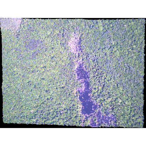 Composite RGB image of NEON's site Harvard Forest