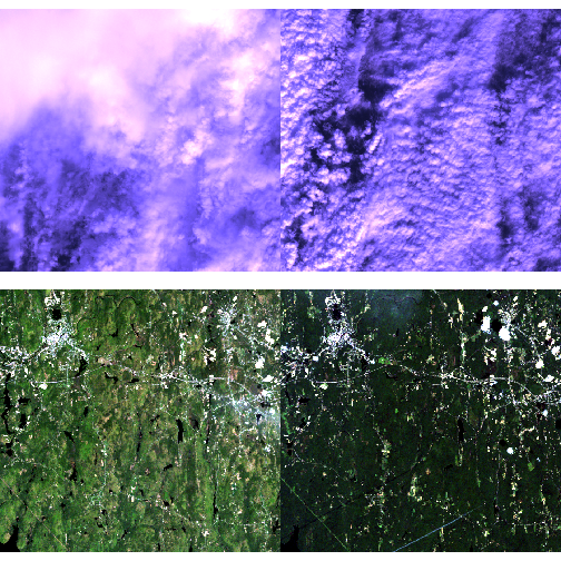 Two sets of NDVI images for NEON's site Harvard Forest making a small time series