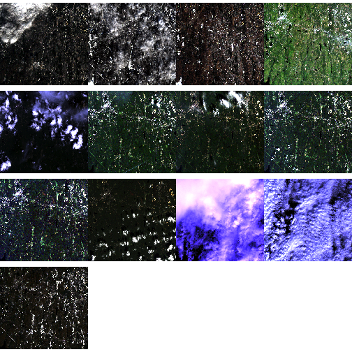 Time series of RGB images showing greenness over time for NEON's site Harvard Forest